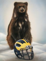 Wolverine - Michigan College Football by secrets-of-the-pen