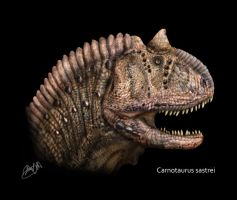 Carnotaurus head by karkemish00