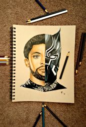 T'Challa (Black Panther) by minidynz
