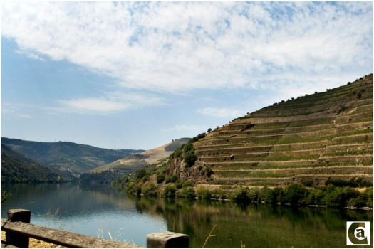 Douro by an1ta