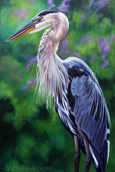 Great Blue Heron by shmeeden