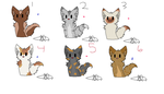 .:Cat adopts! Both free and point:. by Jaytsa