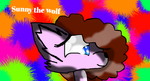 sunny the wolf by theshadowpony357