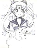 SailorMoon by thebumblebee01