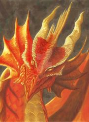 Fire Dragon by BrokenRapture781
