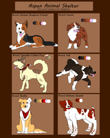 Rescued Dog Adoptables [CLOSED] by Aspen-Animal-Shelter