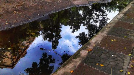 Puddle That Holds The Sky by siamthemfarhan