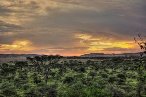 Tanzanie (Sunset) by Bibidef