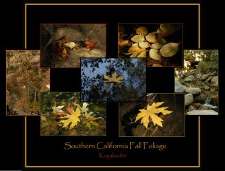 Fall Foliage Collage by kayaksailor