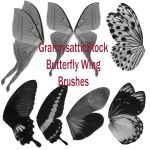 Grannys Butterfly Wing Brushes by GRANNYSATTICSTOCK