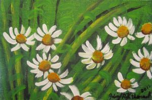 Daisies In The Grass by juliarita