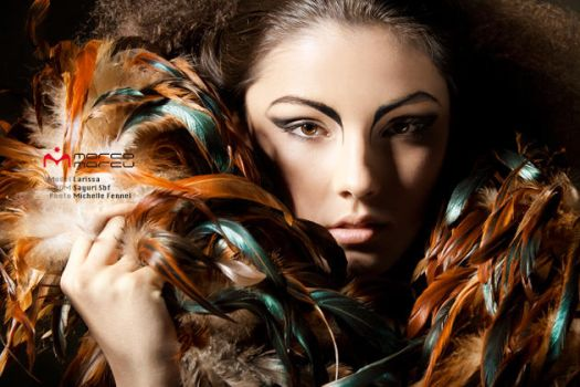 feathers by Michelle-Fennel
