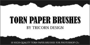 Torn Paper Brushes by TriCornDesign