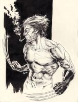 Inktober 2016 1otth Day - Wolverine by giovannag