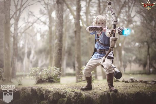 Link by Hylian Cosplay by HylianCosplayItaly