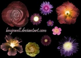 Flower Brushes by bmjewell-stock