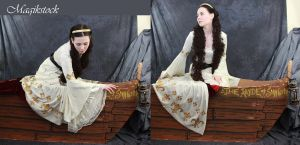the layde of shalott 2 by magikstock