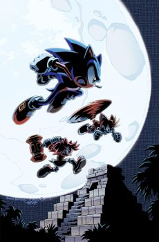 Sonic the Hedgehog 237 Cover by herms85