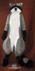 Raccoon fullsuit by MissRaptor