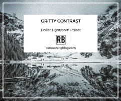 $1 Dollar Lightroom Preset | Gritty Contrast by RetouchingBlog