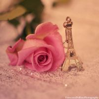 Romantic Paris by FrancescaDelfino