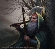 Lord of the Rings: TCG - Dwalin by AnthonyFoti
