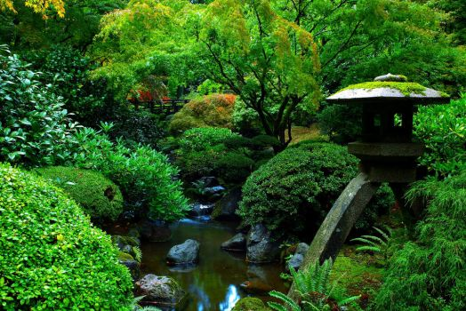 Portland Japanese Garden by coulombic