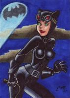 Catwoman Sketch Card by em-scribbles
