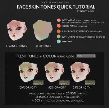 Skin tones tutorial by reneechio