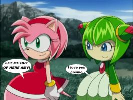 Amy ate Sonic and Cosmo ate Tails by VoreEditer
