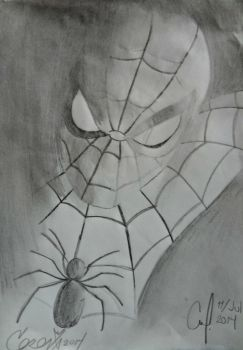 The Amazing Spider-Man by iFocket