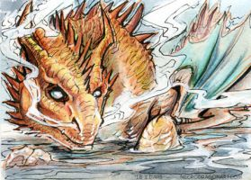 ACEO Jimmerick by drakhenliche
