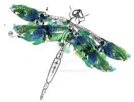 Dragonfly by Laeril