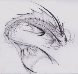 dragon fish - piscera's angel by Mel-Artz