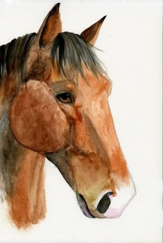 Watercolour Horse by Mew-Suika