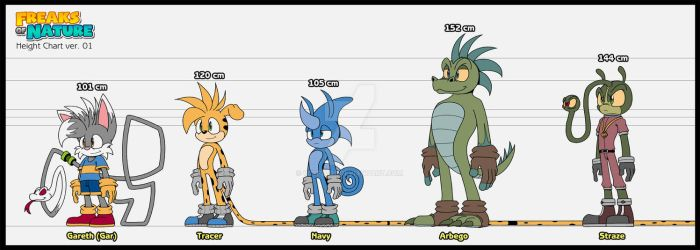 FON height chart