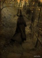 The Witch Goes In Search Of Frogs And Bats by Estruda