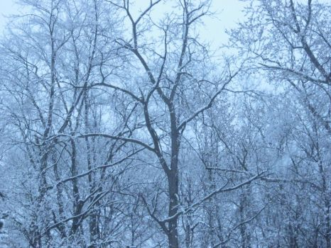 March Snow Fall by pomchillasitems