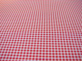 Red White Checked Tablecloth by FantasyStock