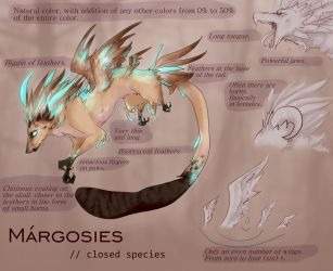 MARGOSIES [REFERENCE] by YoukeTea