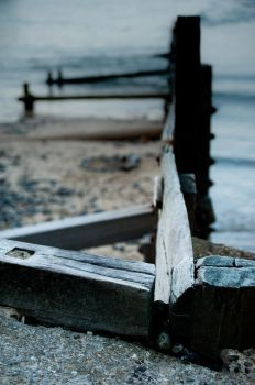 Wood, Sand, Sea by albammo