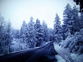 Cold Road to Travel by C-F-photography