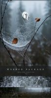 Package - Webbed - 2 by resurgere