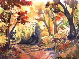 Autumn Path by doma22