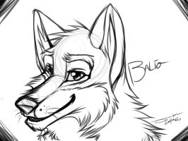 Balto Collab anyone? by PricklyAlpaca