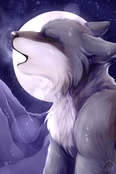 Howling at the Moon by WildMelo