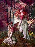 Witches and Fairies by vampirekingdom
