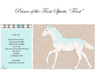 N326 Prince of the Frost Spirits by casinuba