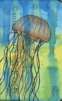 Adventures of a Jellyfish by cybelemoon