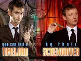 Timelords and Screwdrivers by SquirrelyGRRL
